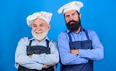 Father And Son Culinary Hobby. Mature Bearded Men Professional Restaurant Cooks. Chef Men Wear Apron poster