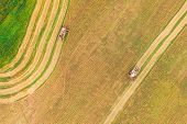 Aerial View Of Rural Landscape. Two Combines Harvesters Working In Field, Collects Seeds. Harvesting poster