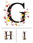 Decorative super caps letters G, H, I