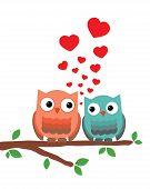 Owl Sitting On Tree V8