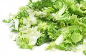 some chopped leaves of escarole endive on a white background