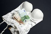 Lingerie and money concept: Love for money