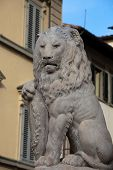 Florence - Lion Marzocco