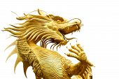 stock photo of synagogue  - Traditional Chinese golden dragon in Chinese temple - JPG