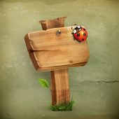 Ladybug on wooden sign old style vector