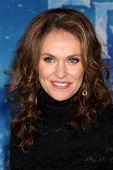 LOS ANGELES - NOV 19:  Amy Brenneman at the