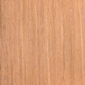 Texture Walnut, Tree Background