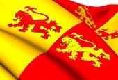 Sons Of Glyndwr Flag