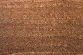 Aida Walnut Tree Wooden Texture