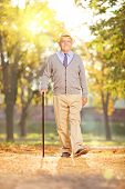 Full length portrait of a senior gentleman walking with a cane in a park, on a sunny day in autumn