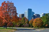 Washington DC, Rosslyn in Autumn - United States