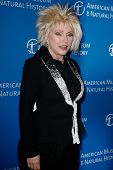 NEW YORK-NOV 21; Singer Debbie Harry attends the American Museum of Natural History's 2013 Museum Ga
