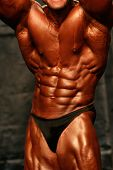 stock photo of abdominal muscle man  - bodybuilder abdominals - JPG
