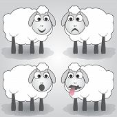 Vector cartoon illustration of sheep