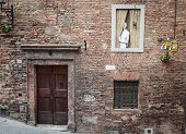 Girl in a window in Siena