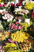 Floral market before spring holidays