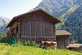 Austrian barn in the Alps