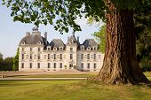 Chateau de Cheverny behind the tree in Loire Valley, France