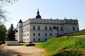 picture of duke  - VILNIUS LITHUANIA  - JPG