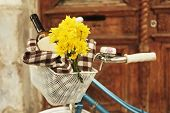 Old bicycle with flowers and checkered blanket in metal basket on brown door background