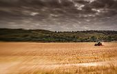 image of plowing  - Tractor plowing the field in rural part of England