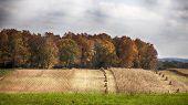 Fall harvest landscape