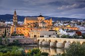 stock photo of bridge  - Cordoba - JPG