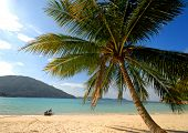 A Lone palm tree and boat on an empty tropical island, Malaysia.