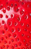 extreme macro red strawberry, background