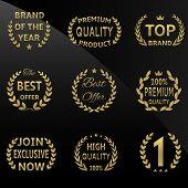 Vector golden badges