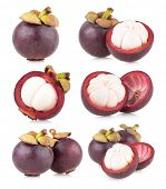 set of 6 mangosteen images