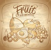Organic fruit hand drawn illustration with text. Eps10