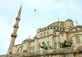 Fragment of Blue Mosque in Istanbul, Turkey