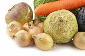 collection of many fresh winter vegetables on a white background