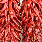 Nice Image of hanging Fresh Red Chili Peppers