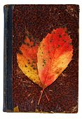 Autumnal Commemoration