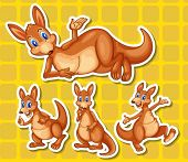 Illustration of a set of kangaroo