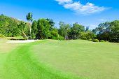 Club Grass Landscape
