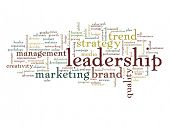 Concept or conceptual abstract leadership and success word cloud or wordcloud isolated on white background