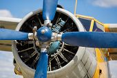 picture of rotor plane  - Propeller and aircraft engine closeup - JPG