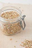 pic of buckwheat  - raw unroasted buckwheat groats in a glass jar - JPG