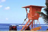Hawaiin Surf Watch