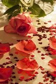 stock photo of champagne color  - Roses champagne petal and heart shaped confeti some effects used to remove certain colours from image and median noise reduction also used on some images to produce a faded look - JPG