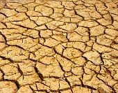 foto of global-warming  - Hay on drought land amazing arid and cracked ground climate change made agriculture plantation have to reduct in summer it very hot warming is global problem cause by greenhouse effect - JPG