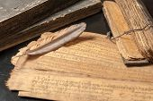 pic of vedic  - Ancient Treatise with bird feather - JPG