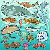 stock photo of sea life  - Sea and river animals  - JPG