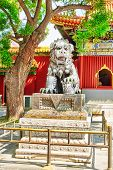 foto of lamas  - Bronze lion at the entrance to beautiful Yonghegong Lama Temple - JPG