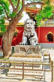 stock photo of lamas  - Bronze lion at the entrance to beautiful Yonghegong Lama Temple - JPG