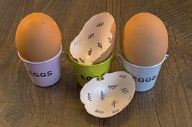 foto of cross-hatch  - Egg shells with egg cups shown lying with on a wooden background with marks inside counting down the days till hatching - JPG