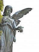 schöne Engel